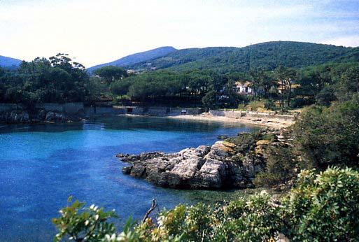 Cala dell'Alga Spiagge elba