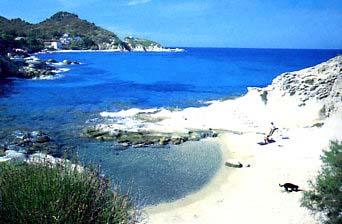 Cotoncello Spiagge elba