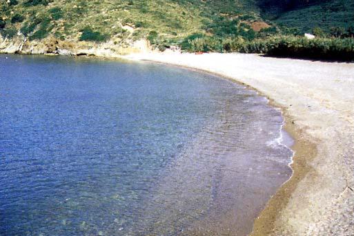 Nisportino Spiagge elba